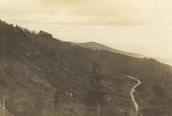 Lumbering operations on Grandfather Mountain, 1934.